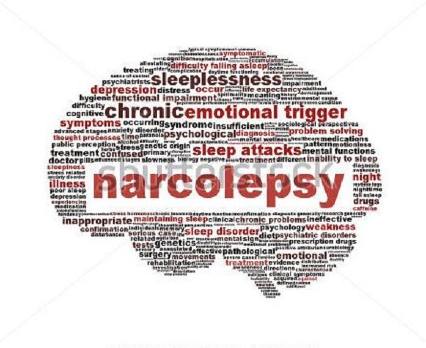 A Compendium of Narcolepsy