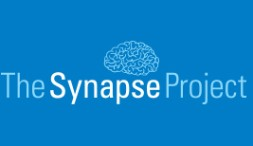 The Synapse Project